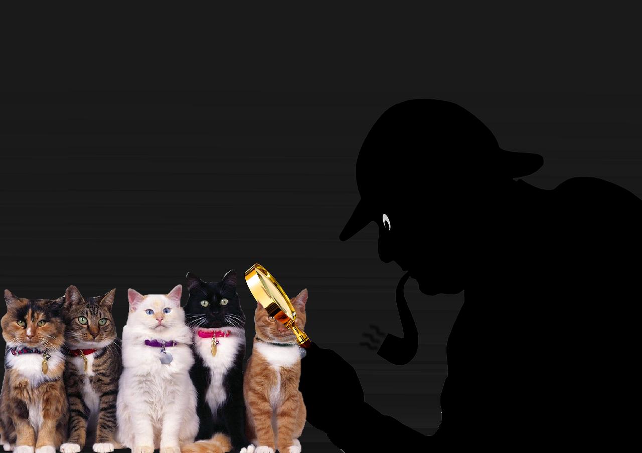 sherlock-holmes detective prive